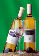 Bulgarian wines